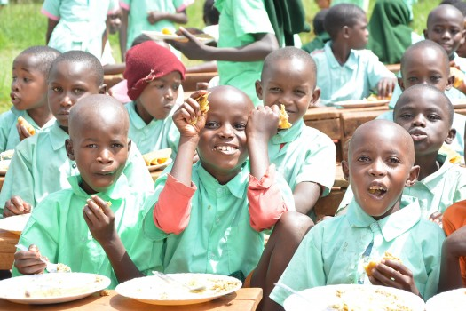 Launch of School Meals Program